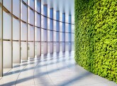 Green Reflex : comment le capital naturel s'inscrit-il dans une démarche environnementale ?