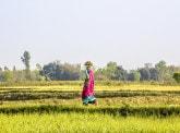 Green Reflex : comment orienter les capitaux privés vers des projets de développement durable ?