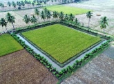 BNP Paribas joins the sustainable project Zero Budget Natural Farming, in India