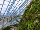 Green Reflex : la neutralité carbone dans une entreprise