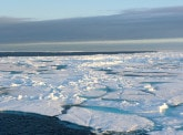 Suivez en direct la conférence #ClimateInitiative : Quel avenir pour l'océan Austral ?