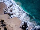 « Our Ocean » : la Fondation BNP Paribas se mobilise pour le futur des océans