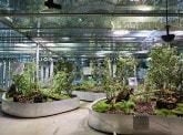 """""""Bio-Inspirée…"""": The new exhibition by the  Cité des Sciences with the BNP Paribas Foundation"""