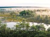 Green Reflex : la compensation carbone volontaire avec ClimateSeed