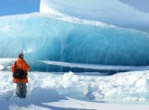 The ice sea sentinels and climate change