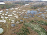 Permafrost: what are the consequences for the climate?
